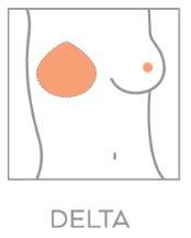 Pavette Delta borstshaper